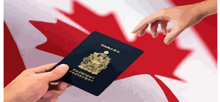 effects of immigration on the canadian Irish immigration to canada: the effects and they lacked the means to secure themselves in the canadian what were the effects of the immigration.