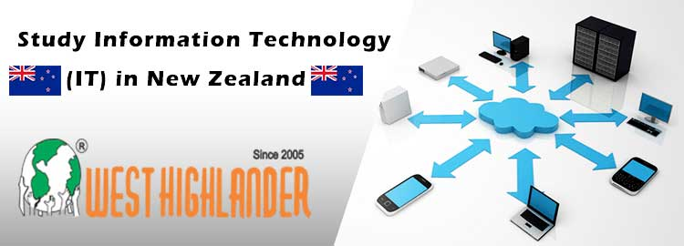 Study Information Technology (IT) in New Zealand