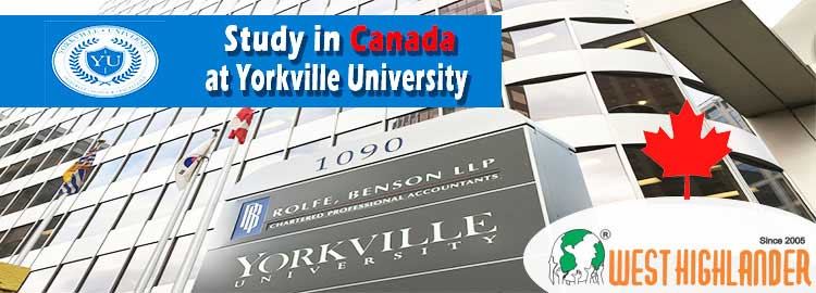 Study in Canada at Yorkville University